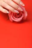 Μανικιούρ. Θηλυκά χέρια στην κόκκινη ανασκόπηση Στοκ Εικόνα