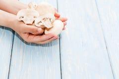 μανιτάρια οργανικά μακρο λευκό στούντιο υγείας τροφίμων νιφάδων καλαμποκιού ανασκόπησης Φρέσκα μανιτάρια στα χέρια Στοκ εικόνες με δικαίωμα ελεύθερης χρήσης