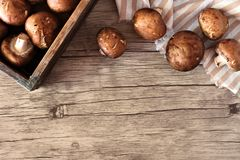 Μανιτάρια που ανατρέπουν από ένα ξύλινο κιβώτιο, τοπ σύνορα πέρα από το ξύλο Στοκ φωτογραφία με δικαίωμα ελεύθερης χρήσης
