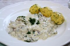 Μανιτάρια στην ξινή σάλτσα κρέμας και με τις πατάτες μαϊντανού στοκ εικόνες με δικαίωμα ελεύθερης χρήσης