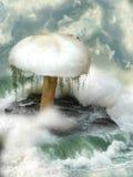 Μανιτάρι φαντασίας Στοκ εικόνες με δικαίωμα ελεύθερης χρήσης