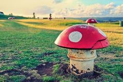 Μανιτάρι & Ώκλαντ σιδήρου στοκ εικόνες με δικαίωμα ελεύθερης χρήσης
