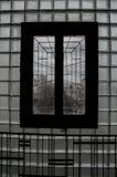 Μανταρίνια Στοκ φωτογραφίες με δικαίωμα ελεύθερης χρήσης