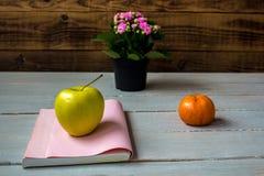 Μανταρίνι και βιβλίο της Apple Στοκ φωτογραφίες με δικαίωμα ελεύθερης χρήσης
