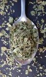 Μαντζουράνα στο κουτάλι πέρα από τον πίνακα κουζινών φρέσκα χορτάρια κήπων στοκ φωτογραφίες