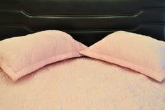 μαξιλάρια σπορείων Στοκ φωτογραφία με δικαίωμα ελεύθερης χρήσης