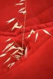 μαξιλάρια Στοκ εικόνες με δικαίωμα ελεύθερης χρήσης