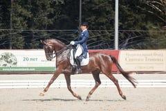 Μαρίνα Aframeeva ονομασμένο άλογο Vosk κατόχων μεταλλίων Στοκ Φωτογραφία