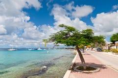 Μαρίνα Bonaire Στοκ Εικόνες