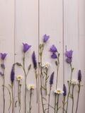 Μαργαρίτες και κουδούνια Wildflowers στο άσπρο ξύλινο υπόβαθρο Στοκ φωτογραφίες με δικαίωμα ελεύθερης χρήσης