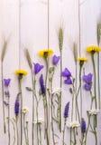 Μαργαρίτες και κουδούνια Wildflowers στο άσπρο ξύλινο υπόβαθρο Στοκ εικόνα με δικαίωμα ελεύθερης χρήσης