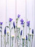 Μαργαρίτες και κουδούνια Wildflowers στο άσπρο ξύλινο υπόβαθρο Στοκ φωτογραφία με δικαίωμα ελεύθερης χρήσης
