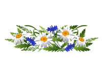 Μαργαρίτες και cornflowers με spikelets Στοκ εικόνα με δικαίωμα ελεύθερης χρήσης