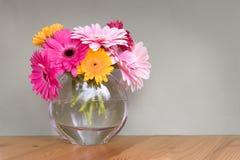 Μαργαρίτες Gerber vase στοκ φωτογραφία με δικαίωμα ελεύθερης χρήσης