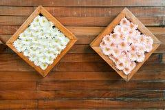 Μαργαρίτες gerbera μεταξιού με το πλαίσιο στον ξύλινο τοίχο Στοκ Φωτογραφίες