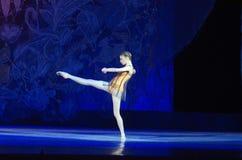 Μαργαριτάρια μπαλέτου Στοκ Εικόνα