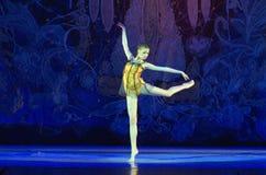 Μαργαριτάρια μπαλέτου Στοκ Εικόνες