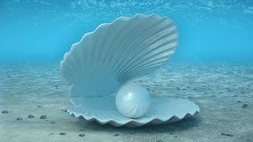 Μαργαριτάρι μέσα σε ένα θαλασσινό κοχύλι Όμορφο μαργαριτάρι στο κοχύλι στο βυθό Οι ακτίνες του φωτός του ήλιου που λάμπουν άνωθεν απεικόνιση αποθεμάτων