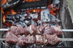 Μαριναρισμένα κομμάτια του φρέσκου κρέατος για τη σχάρα Στοκ εικόνες με δικαίωμα ελεύθερης χρήσης