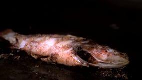 Μαριναρισμένα ψάρια θάλασσας με τα χρυσά τηγανητά κρουστών στο τηγάνι με το πετρέλαιο απόθεμα βίντεο