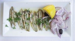Μαριναρισμένες αντσούγιες σε ένα άσπρο πιάτο Στοκ Φωτογραφίες