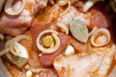 μαριναρισμένο κοτόπουλο κρέας ακατέργαστο Στοκ φωτογραφία με δικαίωμα ελεύθερης χρήσης