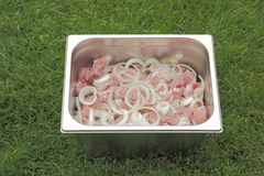 Μαριναρισμένο κρέας για το ψήσιμο στη σχάρα στο κόμμα θερινών οικογενειών Στοκ Εικόνες