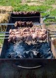 Μαριναρισμένο χοιρινό κρέας shashlik που προετοιμάζεται σε μια σχάρα σχαρών πέρα από το charc Στοκ Φωτογραφία