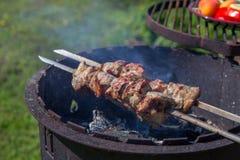 Μαριναρισμένο shashlik να προετοιμαστεί σε μια σχάρα σχαρών πέρα από τον ξυλάνθρακα Στοκ Εικόνα