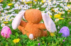 Μαριονέτα κουνελιών και αυγά Πάσχας στο λιβάδι Στοκ Εικόνες