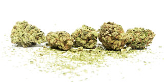 Μαριχουάνα και καννάβεις Στοκ Εικόνα