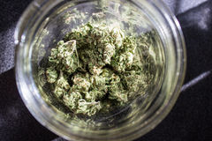 Μαριχουάνα σε ένα βάζο Στοκ φωτογραφία με δικαίωμα ελεύθερης χρήσης