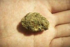 Μαριχουάνα RX Στοκ Φωτογραφίες