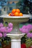 Μαρμάρινο vase με τους καρπούς Στοκ φωτογραφίες με δικαίωμα ελεύθερης χρήσης