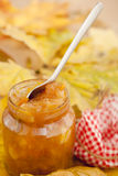 μαρμελάδα μήλων Στοκ εικόνα με δικαίωμα ελεύθερης χρήσης