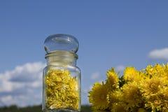 Μαρμελάδα από τα λουλούδια των πικραλίδων στοκ εικόνες