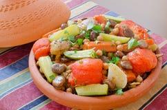 μαροκινά επτά λαχανικά tajine Στοκ φωτογραφία με δικαίωμα ελεύθερης χρήσης