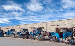Μαροκινή horse-drawn μεταφορά στην οδό σε Essaouira, Μαρόκο Στοκ εικόνες με δικαίωμα ελεύθερης χρήσης