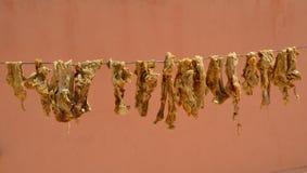 Μαροκινό ξηρό κρέας Guedid στοκ φωτογραφίες με δικαίωμα ελεύθερης χρήσης