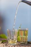 Μαροκινό πράσινο τσάι μεντών Στοκ φωτογραφία με δικαίωμα ελεύθερης χρήσης