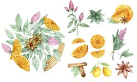 Μαροκινό τσάι και όλα τα συστατικά του Πράσινο τσάι, πορτοκάλι, ασβέστης, κανέλα, μέντα, γαρίφαλα, ζάχαρη, όμορφα ασιατικά teapot ελεύθερη απεικόνιση δικαιώματος
