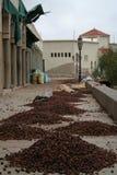 μαροκινό χωριό Στοκ εικόνες με δικαίωμα ελεύθερης χρήσης