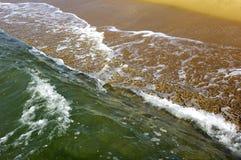 Μαρτινίκα, Sainte Anne, παραλία των les Salines Στοκ φωτογραφίες με δικαίωμα ελεύθερης χρήσης