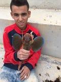 Μαρόκο Ταγγέρη Στοκ Εικόνες