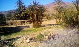 Μαρόκο Στοκ εικόνα με δικαίωμα ελεύθερης χρήσης