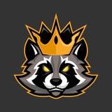 Μασκότ ρακούν βασιλιάδων, αθλητισμός ή esports racoon έμβλημα λογότυπων Στοκ Φωτογραφίες