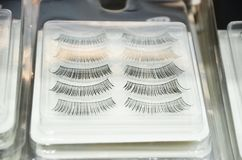 Μαστίγια καθορισμένα Ψεύτικη συλλογή eyelashes Ψεύτικα μαστίγια προϊόντων ομορφιάς γυναικών ρεαλιστικά Συρμένο χέρι θηλυκό eyelas στοκ φωτογραφίες