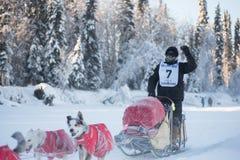 Ματ κύματα αιθουσών στους ανεμιστήρες Στοκ φωτογραφία με δικαίωμα ελεύθερης χρήσης