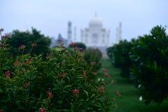 Μαυσωλείο taj-Mahal Στοκ φωτογραφία με δικαίωμα ελεύθερης χρήσης