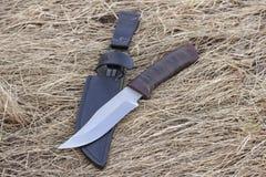 Μαχαίρι τουριστών στην ξηρά χλόη, μαχαίρι κυνηγιού, δολοφονία, στοκ εικόνες με δικαίωμα ελεύθερης χρήσης